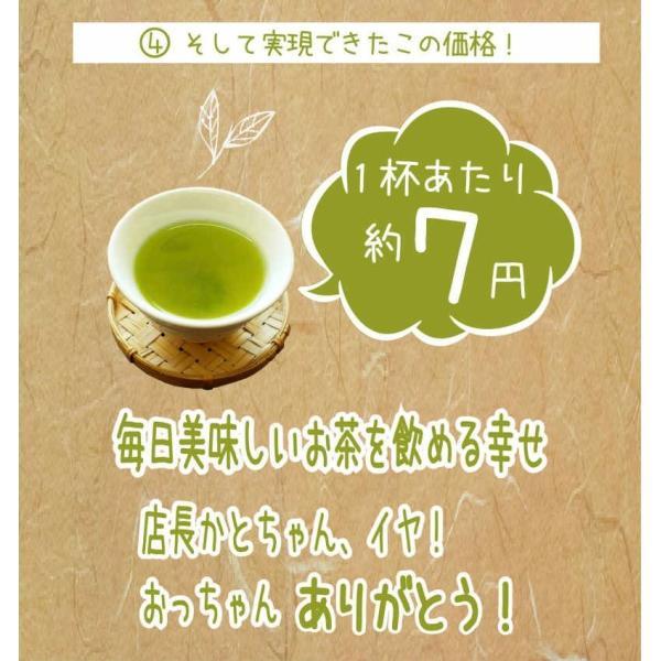 お茶 茶葉 日本茶 深むし茶 100g x3袋セット 送料無料 お茶の王国 静岡から 苦みの中に甘み お茶 日本茶 雑穀米本舗|katochanhonpo|07