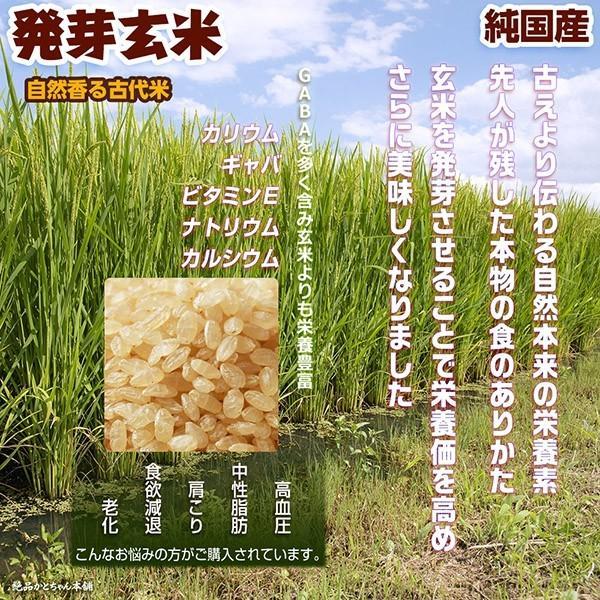 米 雑穀 発芽玄米 国産 発芽玄米 1kg(500g x2袋) 送料無料 雑穀米本舗 katochanhonpo 02