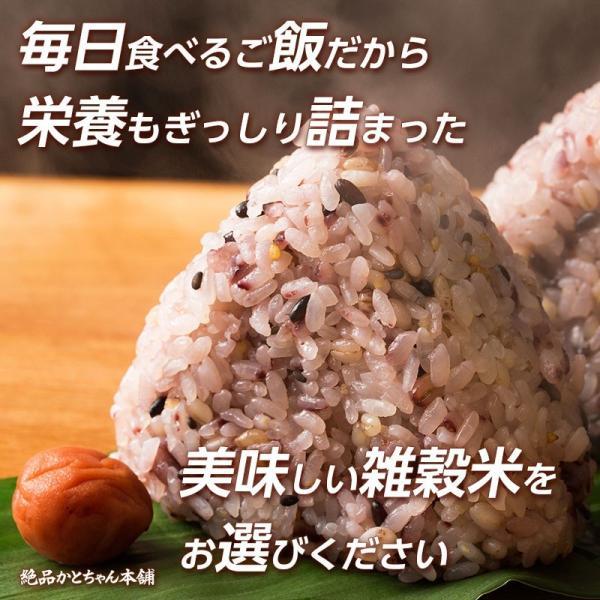 米 雑穀 発芽玄米 国産 発芽玄米 1kg(500g x2袋) 送料無料 雑穀米本舗 katochanhonpo 06