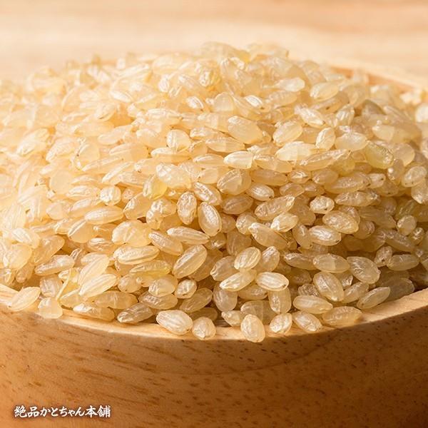 米 雑穀 発芽玄米 国産 発芽玄米 1kg(500g x2袋) 送料無料 雑穀米本舗 katochanhonpo 03