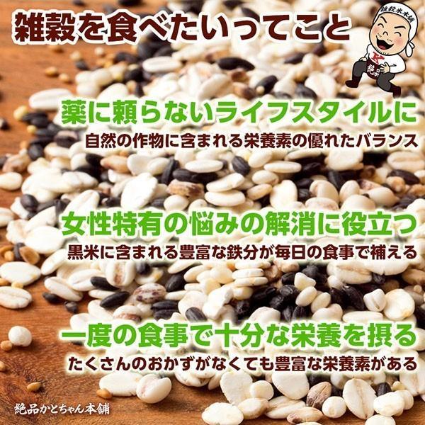 米 雑穀 雑穀米 国産 古代米4種ブレンド(赤米/黒米/緑米/発芽玄米) 1kg(500g x2袋) 送料無料 週末セール|katochanhonpo|06