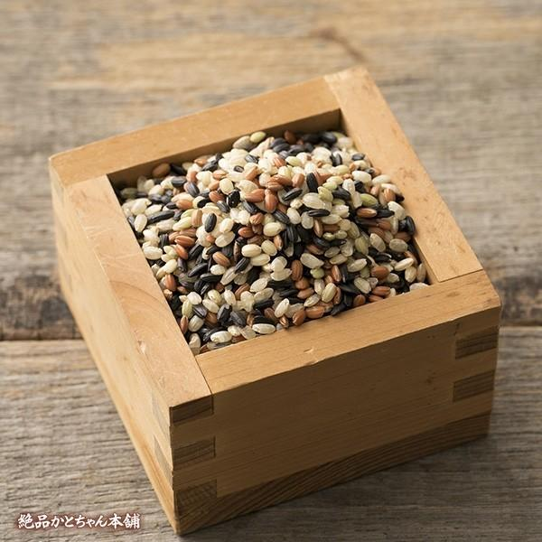 米 雑穀 雑穀米 国産 古代米4種ブレンド(赤米/黒米/緑米/発芽玄米) 1kg(500g x2袋) 送料無料 週末セール|katochanhonpo|03