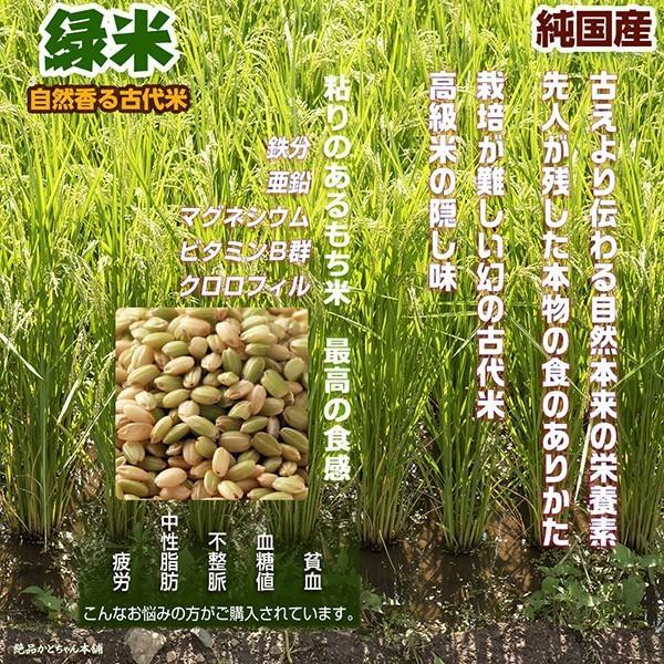 米 雑穀 雑穀米 国産 緑米 1kg(500g x2袋) 送料無料 厳選 香る緑米 プレミアム SALE|katochanhonpo|02