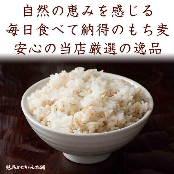 米 雑穀 麦 国産 もち麦(中粒) 1kg(500g x2袋) 送料無料 高品質 厳選 ダイシモチ 腸内環境 脂肪激減 ダイエット 新時代幕開け|katochanhonpo|07