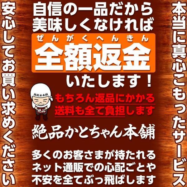 絶品 寿司はね海苔 焼き海苔 有明海産 訳あり 送料無料 ポスト投函|katochanhonpo|09