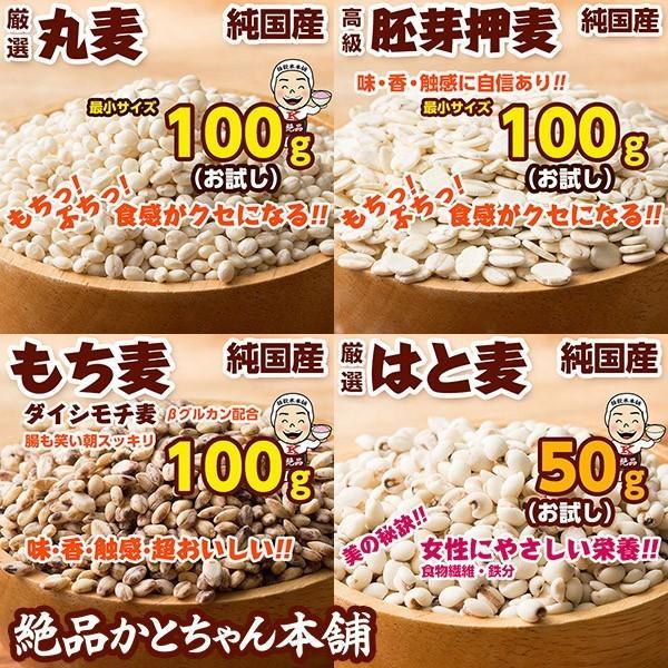 米 雑穀 雑穀米 国産 20種から選べる5品お試しセット 厳選 国産雑穀米 100g x5袋 送料無料 雑穀米本舗|katochanhonpo|05