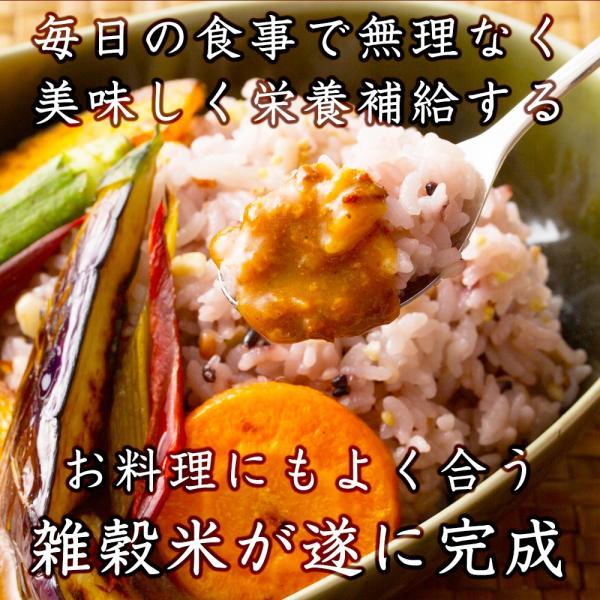 米 雑穀 雑穀米 国産 栄養満点23穀米 300g 送料無料 国内産 もち麦 黒米 5400円以上お買い物でクーポン有|katochanhonpo|03