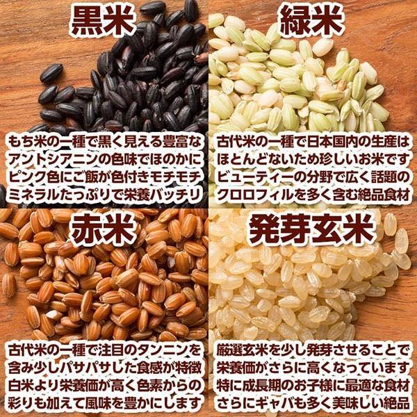 米 雑穀 雑穀米 国産 栄養満点23穀米 5kg(500g x10袋) 送料無料 国内産 もち麦 黒米 新時代幕開け|katochanhonpo|08