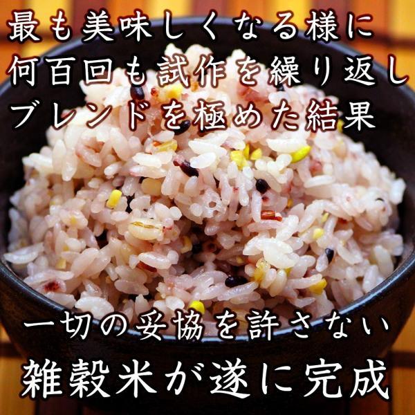 米 雑穀 雑穀米 国産 栄養満点23穀米 1kg(500g x2袋) 送料無料 国内産 もち麦 黒米 雑穀米本舗|katochanhonpo|04