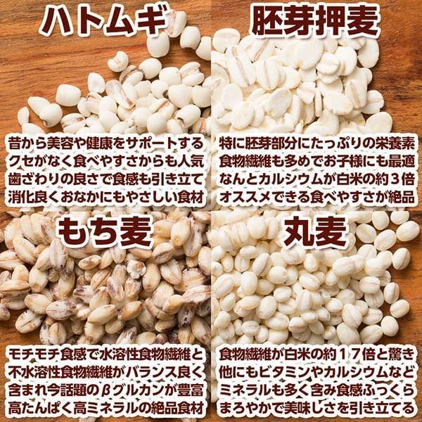 米 雑穀 雑穀米 国産 栄養満点23穀米 1kg(500g x2袋) 送料無料 国内産 もち麦 黒米 雑穀米本舗|katochanhonpo|07
