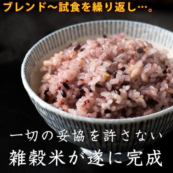 米 雑穀 雑穀米 国産 胡麻香る十穀米 100g 送料無料 雑穀米本舗 katochanhonpo 17