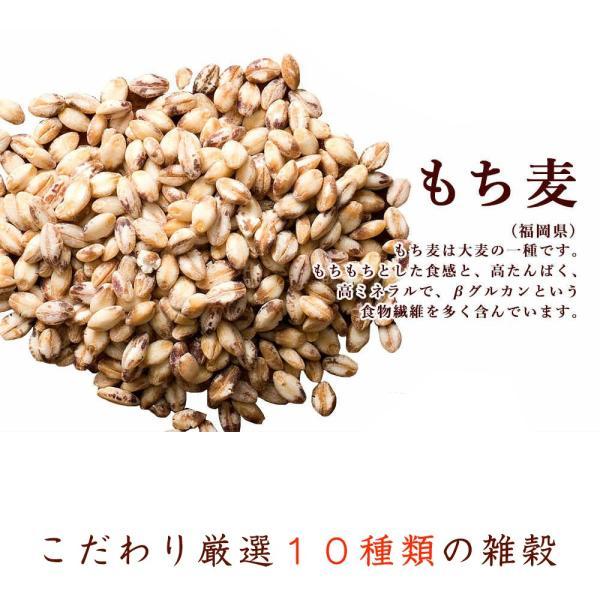 絶品秋の雑穀セール 胡麻香る本当に美味しい十穀米 1kg (500g x 2袋) 人気サイズ 厳選国産 送料無料 ポスト投函|katochanhonpo|11