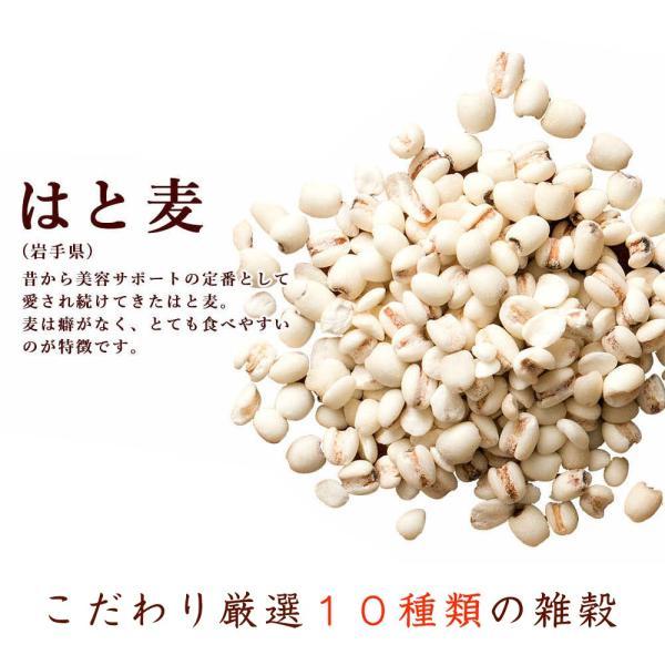 絶品秋の雑穀セール 胡麻香る本当に美味しい十穀米 1kg (500g x 2袋) 人気サイズ 厳選国産 送料無料 ポスト投函|katochanhonpo|12