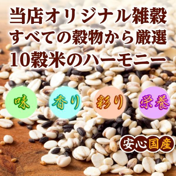 絶品秋の雑穀セール 胡麻香る本当に美味しい十穀米 1kg (500g x 2袋) 人気サイズ 厳選国産 送料無料 ポスト投函|katochanhonpo|04