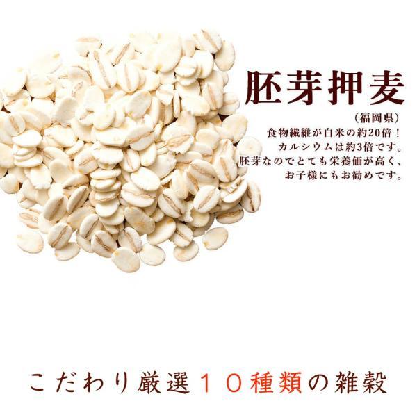 絶品秋の雑穀セール 胡麻香る本当に美味しい十穀米 1kg (500g x 2袋) 人気サイズ 厳選国産 送料無料 ポスト投函|katochanhonpo|09