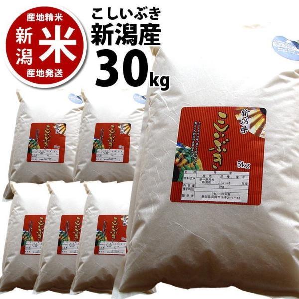 こしいぶき 30kg 新潟産 新潟米 30年度 産地直送 特産品 名物商品 5kg×6袋|katoseika