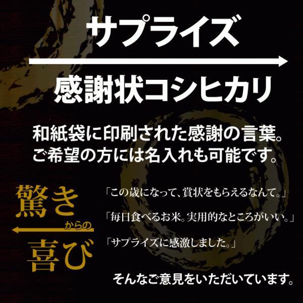 名入れ 感謝状 新潟産 コシヒカリ 5kg 30年産 産地直送 特産品 名物商品 加藤製菓|katoseika|02