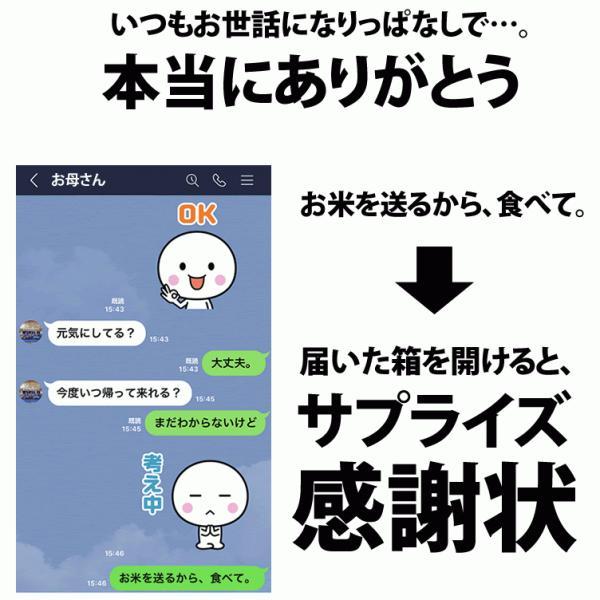 名入れ 感謝状 新潟産 コシヒカリ 5kg 30年産 産地直送 特産品 名物商品 加藤製菓|katoseika|03