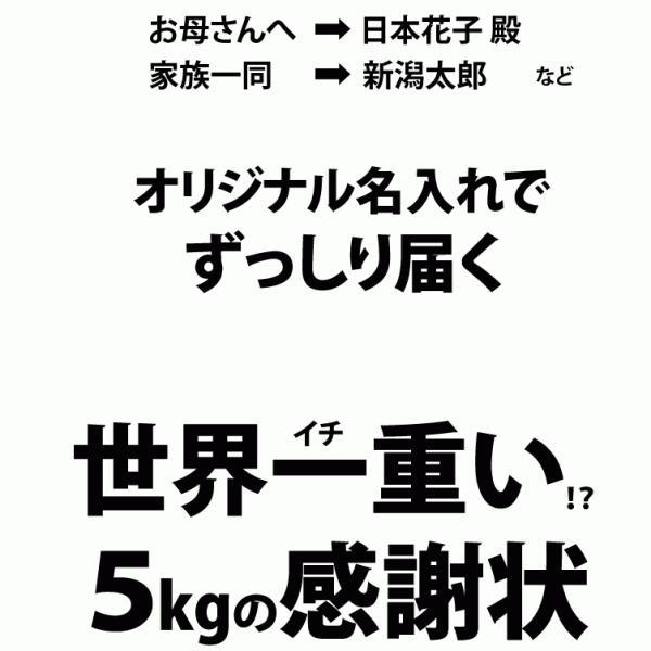 名入れ 感謝状 新潟産 コシヒカリ 5kg 30年産 産地直送 特産品 名物商品 加藤製菓|katoseika|05