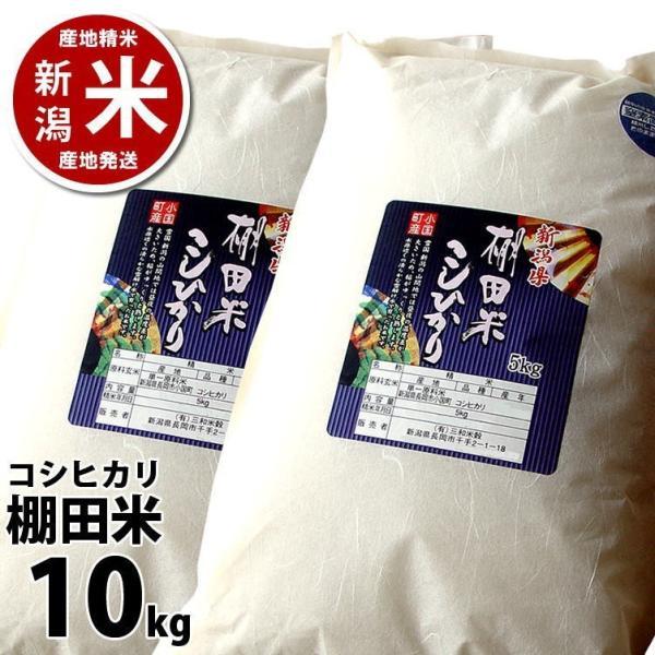 コシヒカリ 10kg 小国町産 棚田米 新潟米 30年産 産地直送 特産品 名物商品 5kg×2袋|katoseika