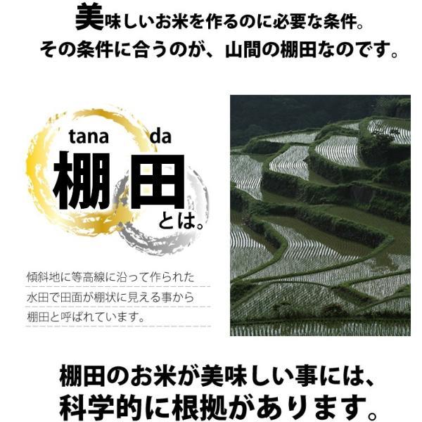 コシヒカリ 10kg 小国町産 棚田米 新潟米 30年産 産地直送 特産品 名物商品 5kg×2袋|katoseika|03