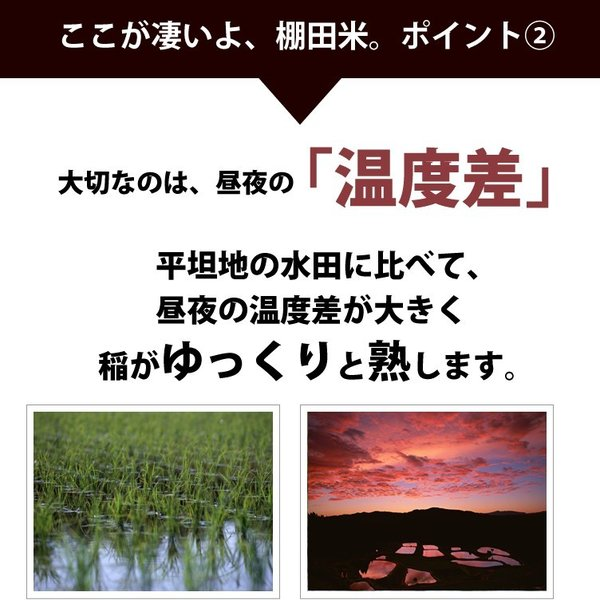 コシヒカリ 10kg 小国町産 棚田米 新潟米 30年産 産地直送 特産品 名物商品 5kg×2袋|katoseika|05