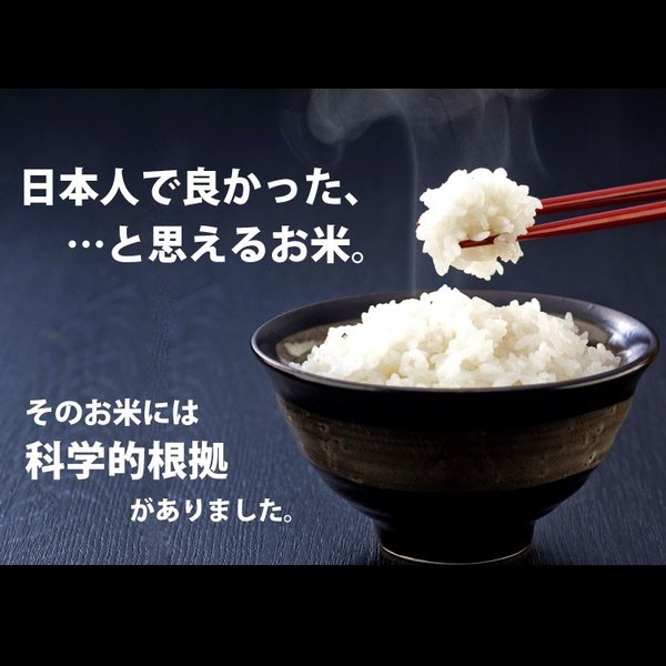 コシヒカリ 2kg 小国町産 棚田米 新潟米 30年産 産地直送 特産品 名物商品|katoseika|02