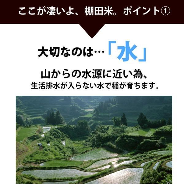 コシヒカリ 2kg 小国町産 棚田米 新潟米 30年産 産地直送 特産品 名物商品|katoseika|04