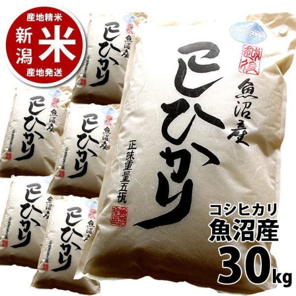 コシヒカリ 30kg 魚沼産 新潟米 30年度産 産地直送 特産品 5kg×6袋 katoseika