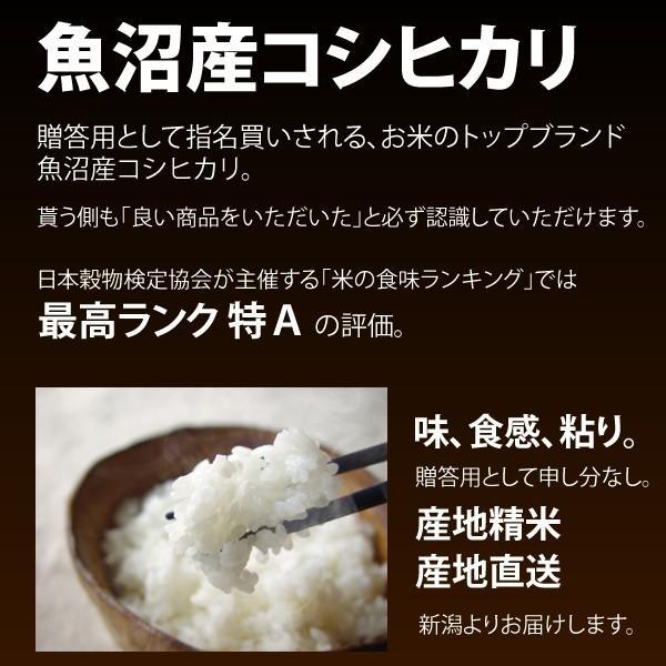 コシヒカリ 30kg 魚沼産 新潟米 30年度産 産地直送 特産品 5kg×6袋 katoseika 03