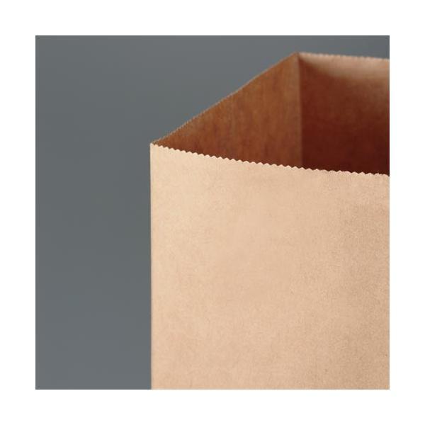 カウネット 丸紐手提げ袋 薄口 茶(未晒) SS 50枚×3
