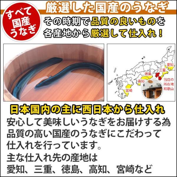 訳あり ひつまぶし 国産 きざみ うなぎ ミニ 10食セット(ウナギ 鰻 ワケアリ 訳アリ) kawaguchisuisan 04