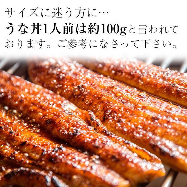 タイムセール 特大 国産 うなぎ 蒲焼き 170g×5本セット 鰻 ウナギ|kawaguchisuisan|03