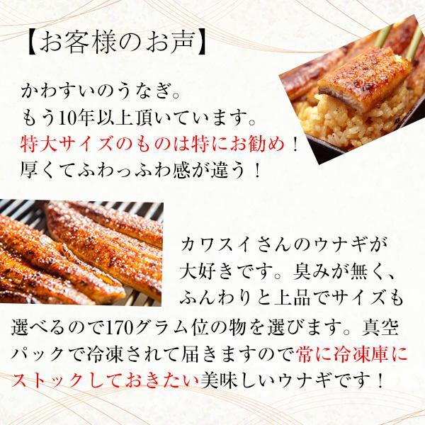 タイムセール 特大 国産 うなぎ 蒲焼き 170g×5本セット 鰻 ウナギ|kawaguchisuisan|04