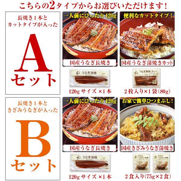 国産 うなぎ 蒲焼き 2種セット ウナギ ギフト お中元 御中元 プレゼント kawaguchisuisan 03