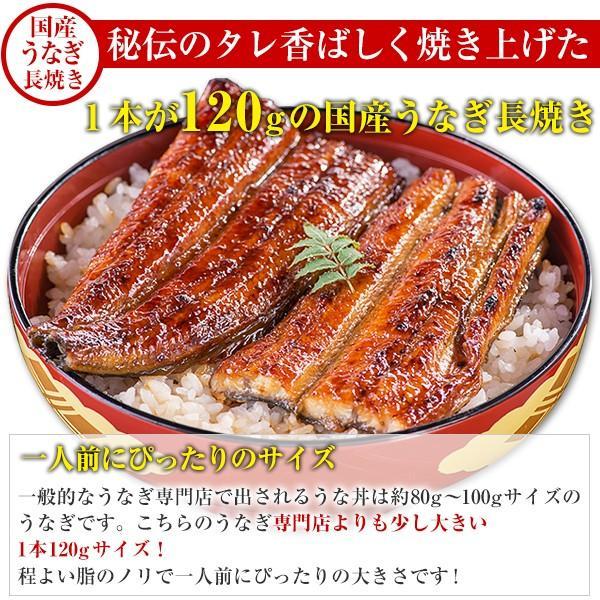 国産 うなぎ 蒲焼き 2種お試しセット 送料無料 グルメ ウナギ 鰻|kawaguchisuisan|04