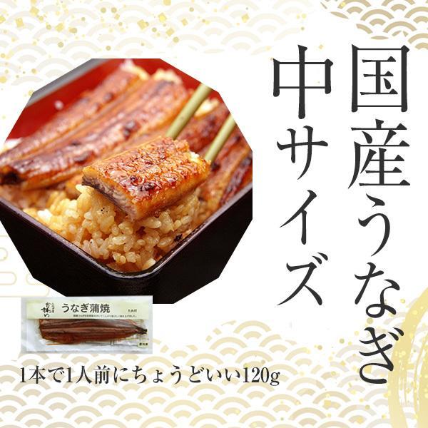 国産 うなぎ 蒲焼き 120g-149g×2本|kawaguchisuisan|02
