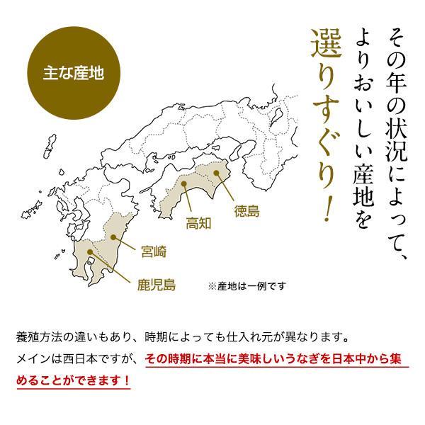 国産 うなぎ 蒲焼き 120g-149g×2本|kawaguchisuisan|06