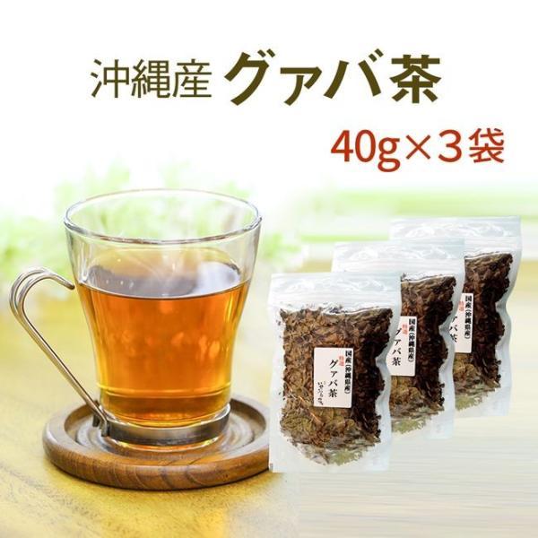国産 グァバ茶 40g×3セット グアバ