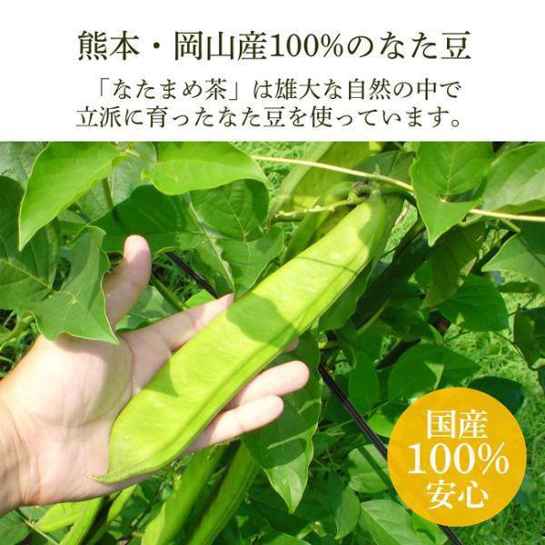 なた豆茶 なたまめ茶 国産 送料無料 10P kawamotoya 04