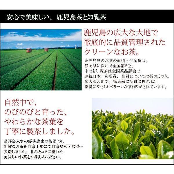 知覧茶 TVで話題の ゆたかみどり 日本茶 80g 鹿児島茶|kawamotoya|03