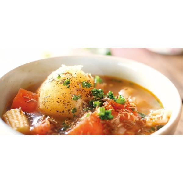 スープマグ ステンレス スープジャー 真空二重構造 内面セラミックコーティング モグモグ スープ&シチュー  400ml MM-402 レッド 2887/送料無料|kawanetjigyoubu|08