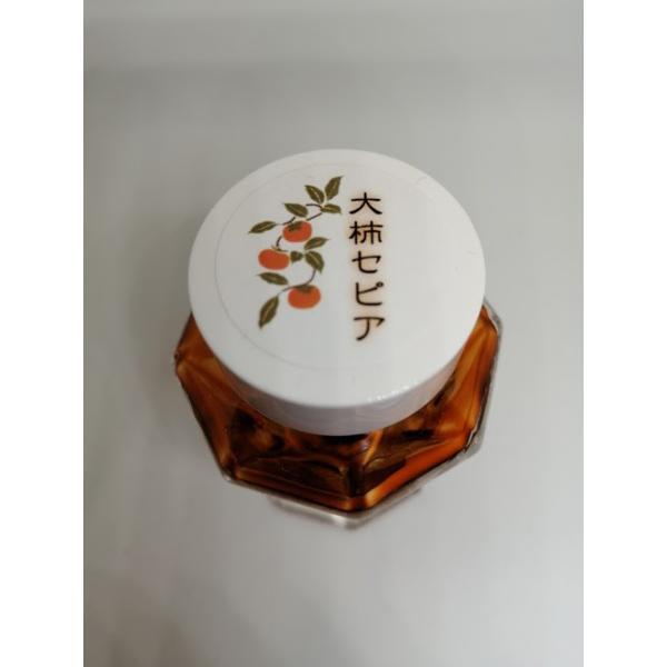大柿セピア|kawasaki-bungu|03