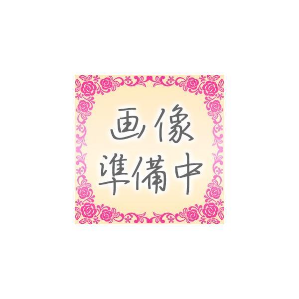 パーカー インジェニュイティ 5th(フィフス)|kawasaki-bungu