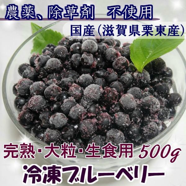 2021年 冷凍ブルーベリー 500g 無農薬栽培 国産ブルーベリー ラビット・アイ 生食用 クール便 冷凍