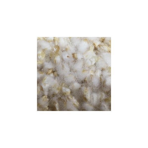 【送料無料】無農薬玄米麹(乾燥) 750g 無化学肥料 滋賀県産|kawazoesuzou|03
