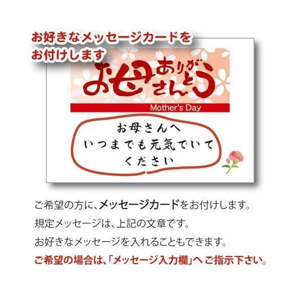 母の日 ギフト 2018  新茶 プレゼント 名入れ お茶80gと 秋桜 湯呑み セット 緑茶 煎茶 日本茶|kayamaen|05