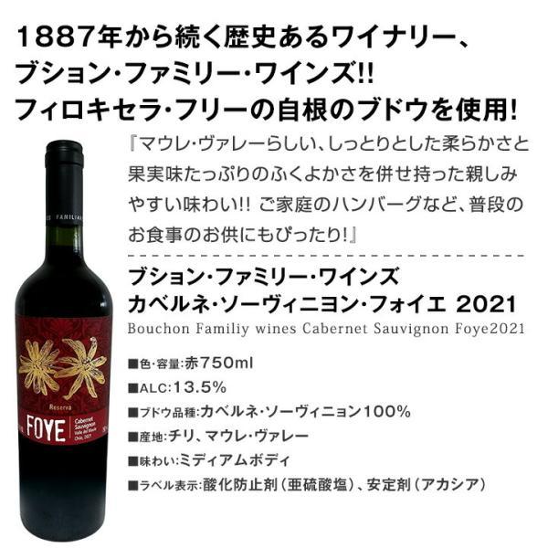 赤ワイン12本セット イタリア スペイン フルボディ 第104弾 wine set|kbwine|10