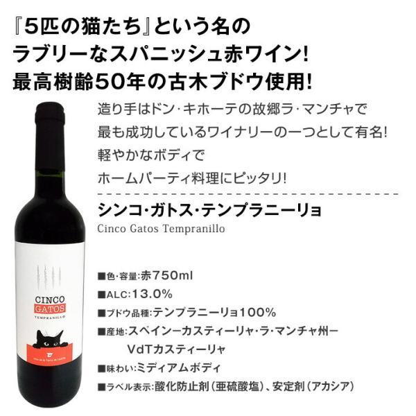 赤ワイン6本セット 第131弾 wine set フランス イタリア スペイン フルボディ kbwine 07