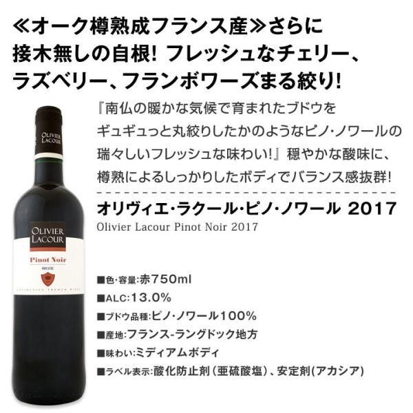 赤ワインセット 第17弾激得ブルゴーニュ&南仏フレンチ・ピノ・ノワール6本セット wine set|kbwine|07